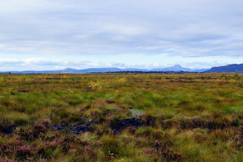 Flanders Moss Peatland Reserve