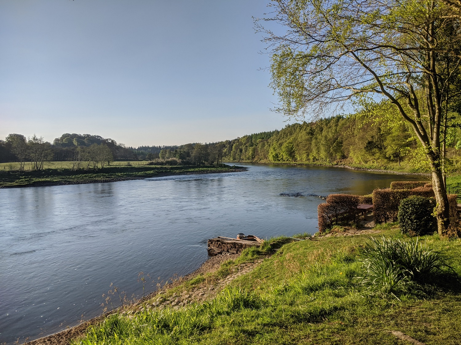 Riverbank in Perthshire
