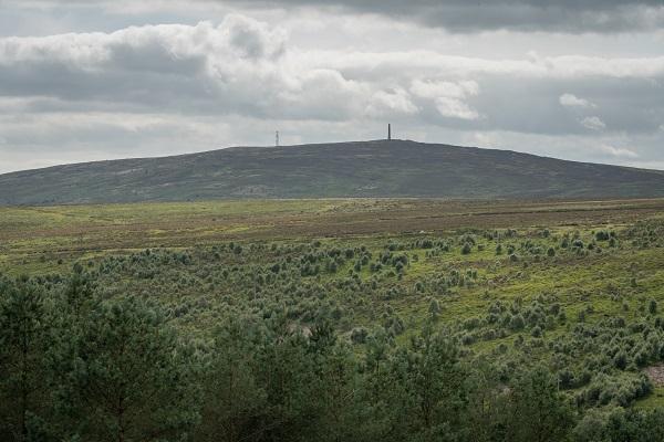 Langholm Moor copyright David LinternJohn Muir Trust