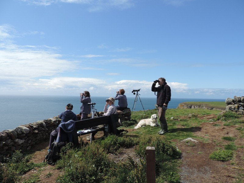 People surveying sea at Mull of Galloway