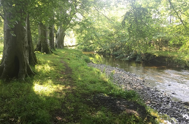 River Walk in Coulter copyright Community Action Lanarkshire