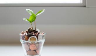 Plant growing out of glass full of money