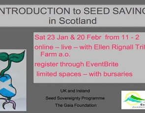 Intro to seed saving info graphic