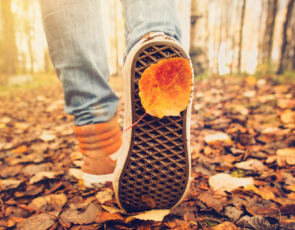 Close up of person walking in autumn woods