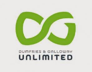 DG Unlimited logo