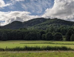 Countryside view of Hills and trees in Dunkeld