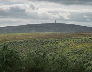 Langholm Muir