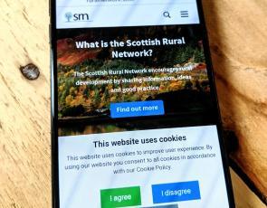 Mobile phone showing SRN website