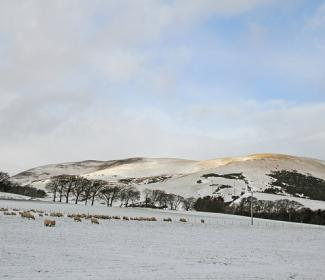 Snowy farm landscape