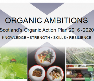 Screenshot of organic ambitions action plan