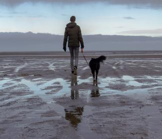 a man walking his dog on the beach