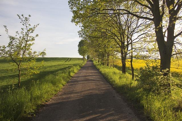 Polish road