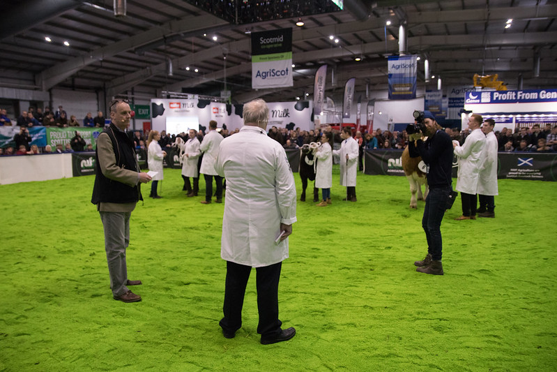 Animal judging at AgriScot 2018, crown copyright. Photographer: Barrie Williams