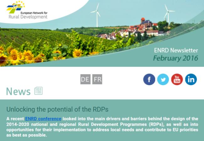 Screenshot of European Network for Rural Development newsletter