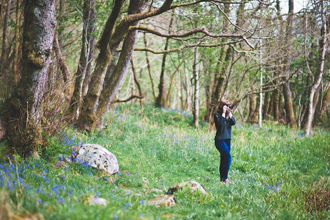 Person taking photo in woods with bluebells