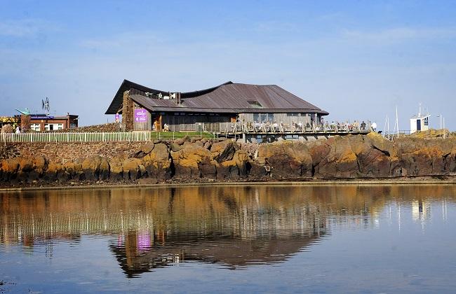 The Scottish Seabird Centre