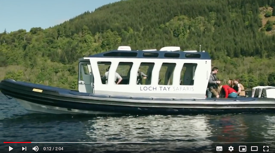 Screenshot from Highland Safari video