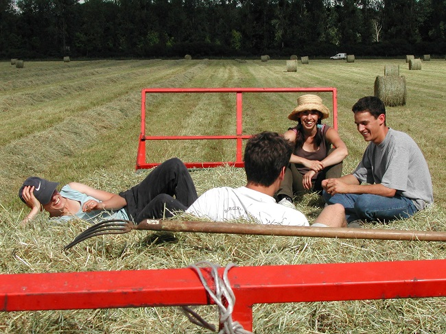Four young people sitting in a hay field