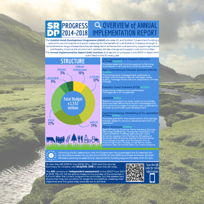 Infographic cover