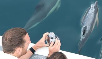Volunteer Sea-Watchers dolphin watching off Newquay, Cornwall on August 3rd, 2018, during last year's NWDW event . Photo credit: Newquay Seasafaris and Fishing.