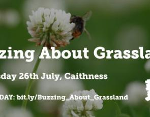 Buzzing About Grassland text over image of bee on a flower