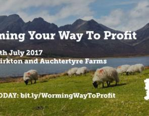 Sheep in field with hills in background and text: worming your way to profit