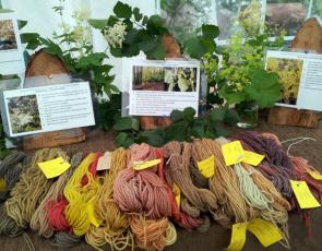 Dyed yarns on table