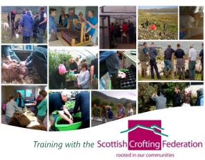 Montage of crofting training photos