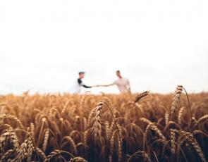 Two people shaking hands in field