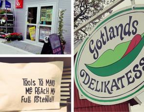 Collage of photos from Swedish Rural Parliament
