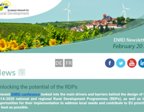 Screenshot of European Network for Rural Development newsletter