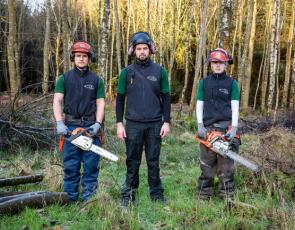 Three men in forest with chainsaws