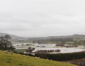 Flooding in Perthshire. Photographer - Matt Cartney. Crown Copyright.