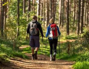 2 Walkers on a wooded section of the John Muir Way