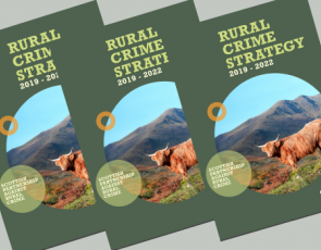 Front cover of SPARC Rural Crime Strategy