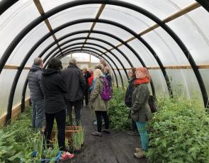 Horticultural Hercules project