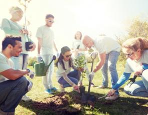 People planting tree