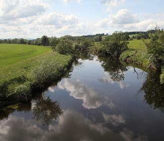 river with fields and trees