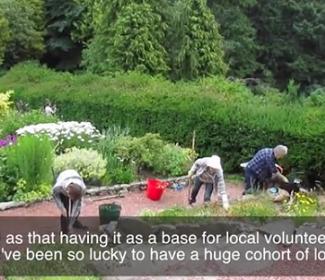 Still from Castlebank Park video